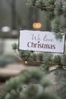 Metalowa Tabliczka We Love Christmas IB Laursen (2)