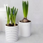 Kubek White/just for you in black Bastion Collections  (2)