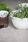 Ceramiczna miska z dzióbkiem Butter Cream Mynte IB Laursen (5)